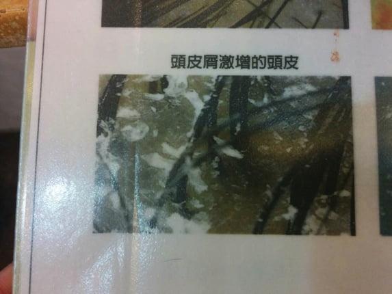 台湾ヘアサロン 12