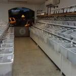 すべて量り売りのバイロンベイのオーガニックスーパー。これは過去じゃなく未来のスーパーの形かもしれない。