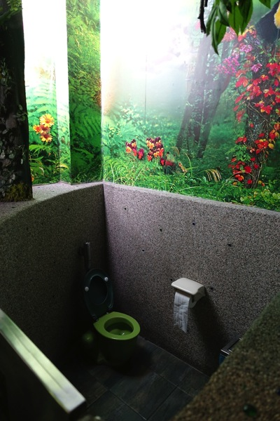 Taiwan Toilet 35