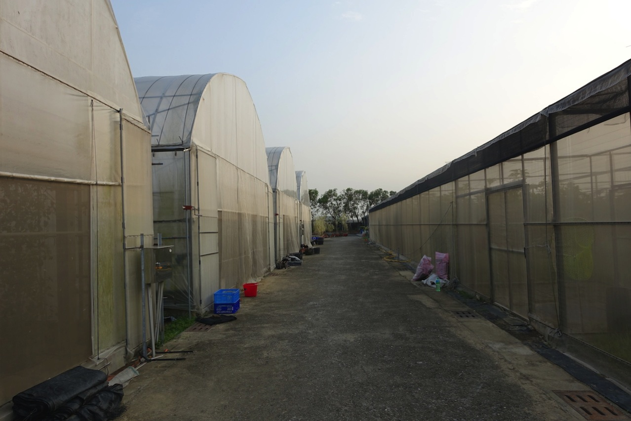 Tainan organic farm 0055
