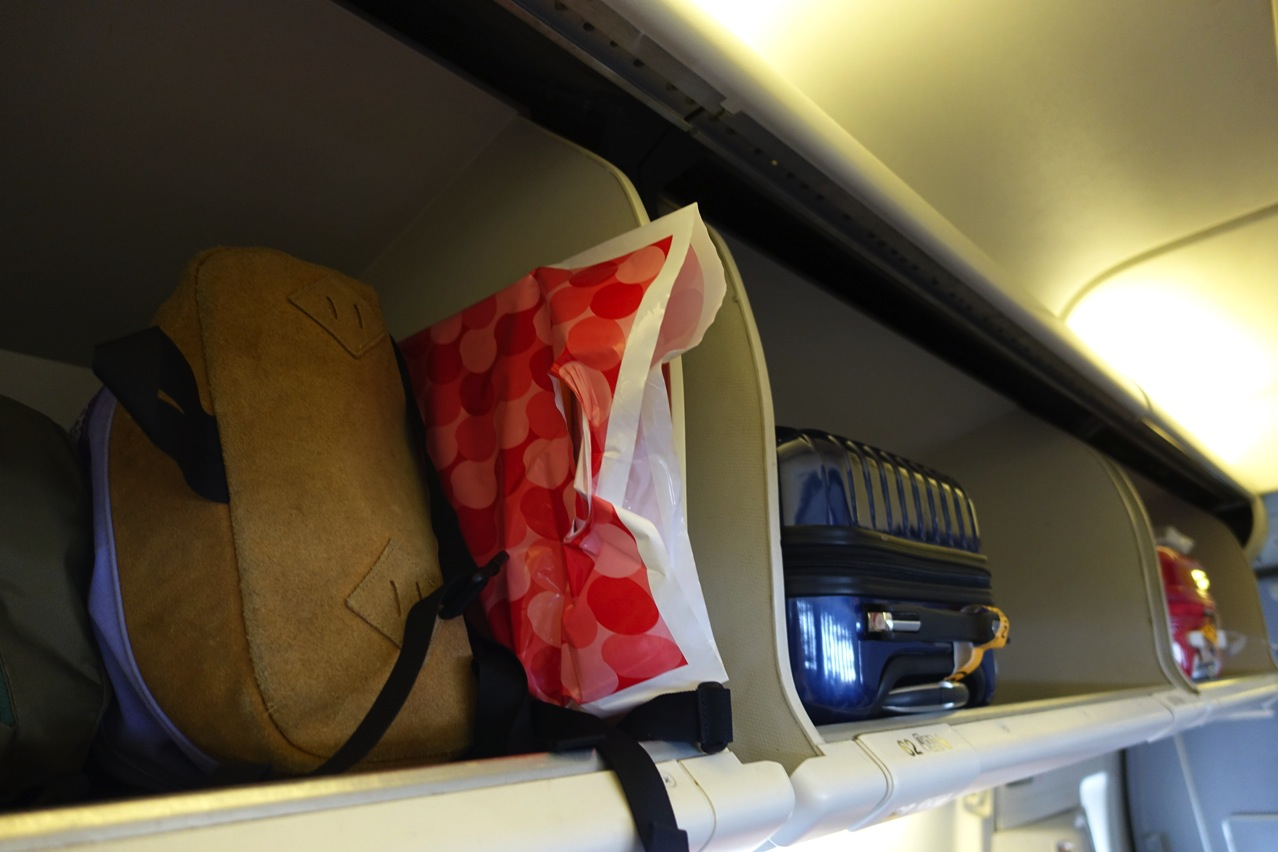 Airplane bag airport 01