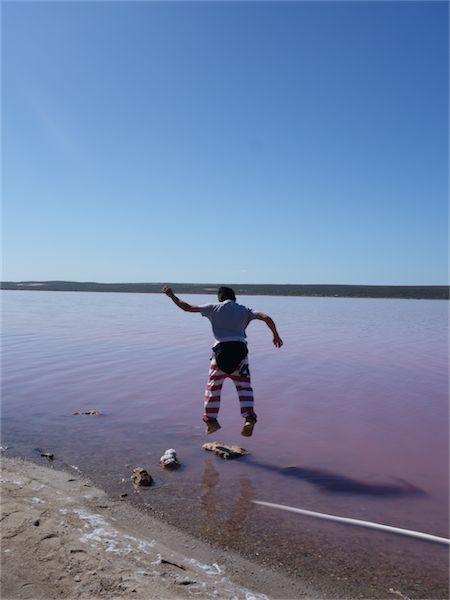Pink lake 15