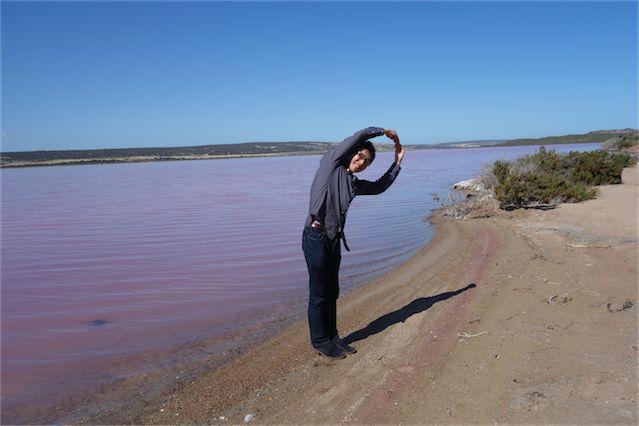 Pink lake 13