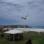 スティーブ・ジョブズも訪れたことがあるという、シドニーのボンダイビーチで泳いできました!!