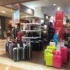 ワーキングホリデーに持っていくべきスーツケースとは何か? 商品検討編