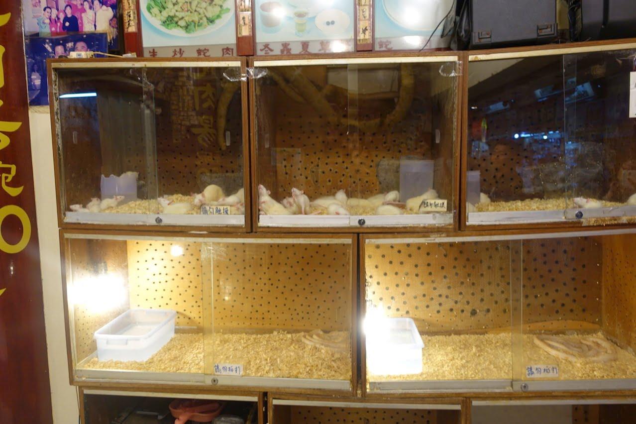 Taiwan huaxijie hebi 003