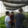 台南オーガニック農場見学!台湾人農家がどんな感じでオーガニック農作物を作っているのか、現地に行ってきました
