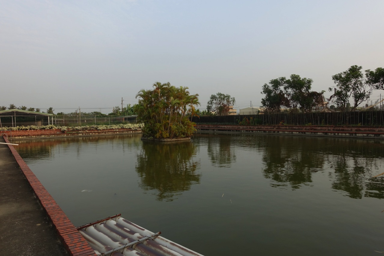 Tainan organic farm 0067