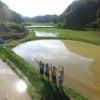 素足で水田に入って苗を手植えしてみよう!第1回淡路島稲作ワークショップを開いたので、初日レポートを報告します