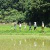 前回2名の参加者さんが今回は2倍の4名に!第2回淡路島稲作ワークショップを開いたので、初日レポートを報告します